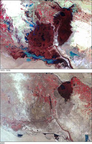Landsat_mesopotamia